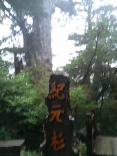 ♯55  恵みの雨!?