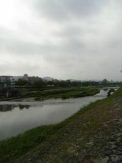 #363 京都・鴨川より