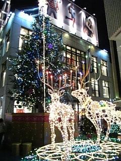 #496 渋谷ツリー