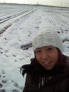 #531 雪の具合は…
