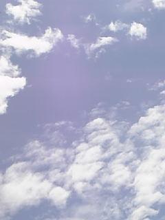 #305 昨日の空